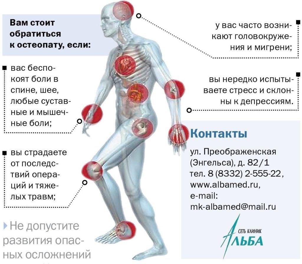 osteopat na rassylku 4