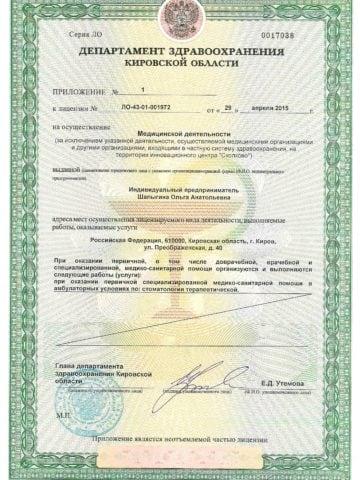 Лицензии Шалыгина 003